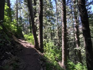 Family hikes on the Desolation and Thayne Canyon Trails