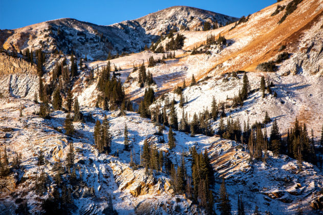 Alta's early snow Oct. 2020.