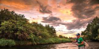 Woman stands in river fly fishing