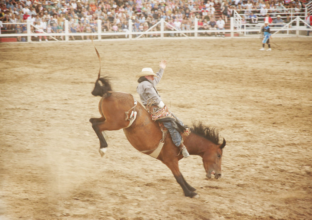 Man rides horse at Pleasant Grove Strawberry Days Rodeo, one of Utah's summer city celebrations
