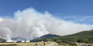 After the Parleys Canyon Fire, a controlled burn may be coming to Park City